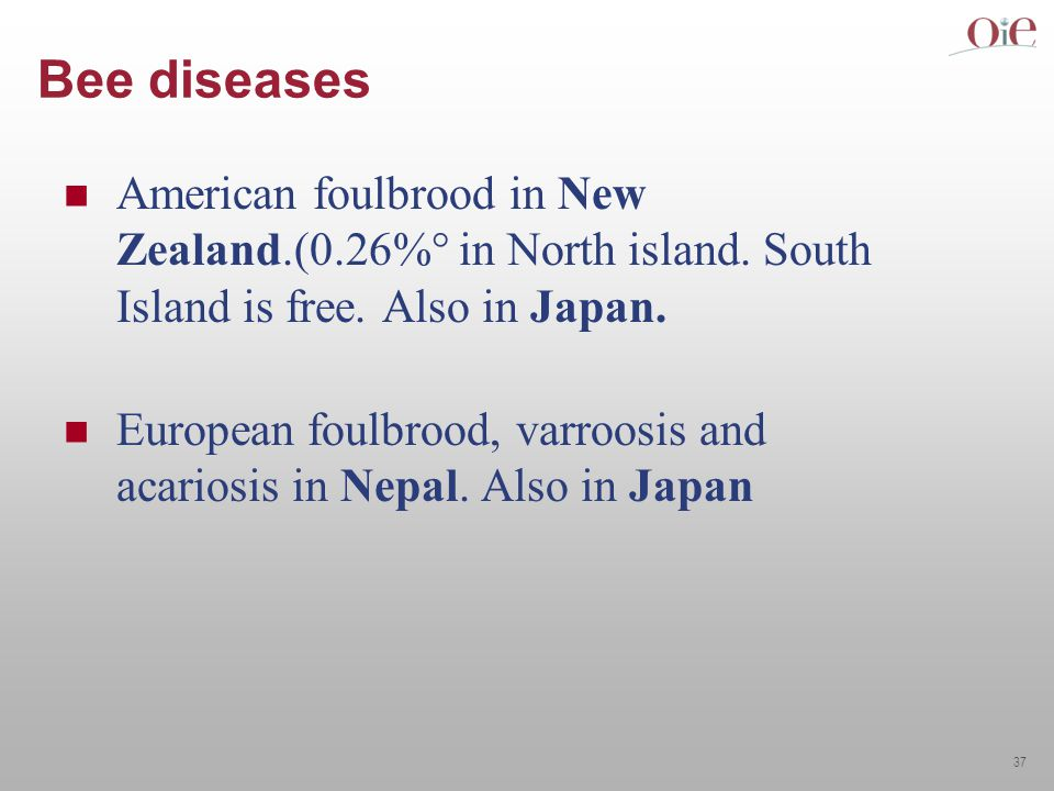 37 Bee diseases American foulbrood in New Zealand.(0.26%° in North island.
