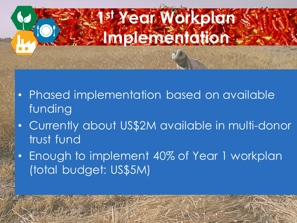 Phased implementation based on available funding Currently about US$2M available in multi-donor trust fund Enough to implement 40% of Year 1 workplan (total budget: US$5M) 1 st Year Workplan Implementation