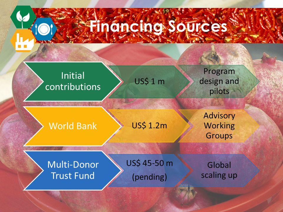 Initial contributions US$ 1 m Program design and pilots World Bank US$ 1.2m Advisory Working Groups Multi-Donor Trust Fund US$ 45-50 m (pending) Global scaling up Financing Sources