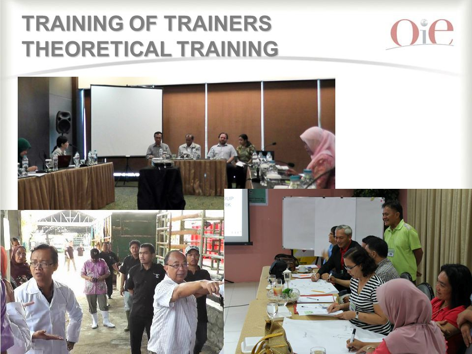 13 TRAINING OF TRAINERS THEORETICAL TRAINING