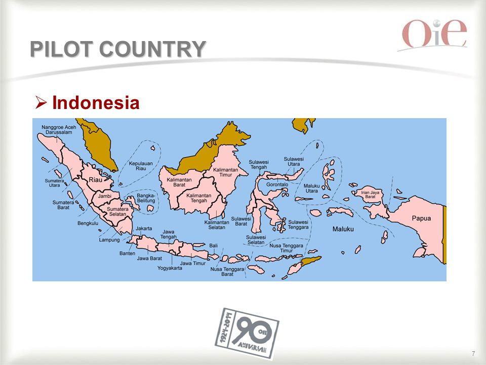 77 PILOT COUNTRY  Indonesia