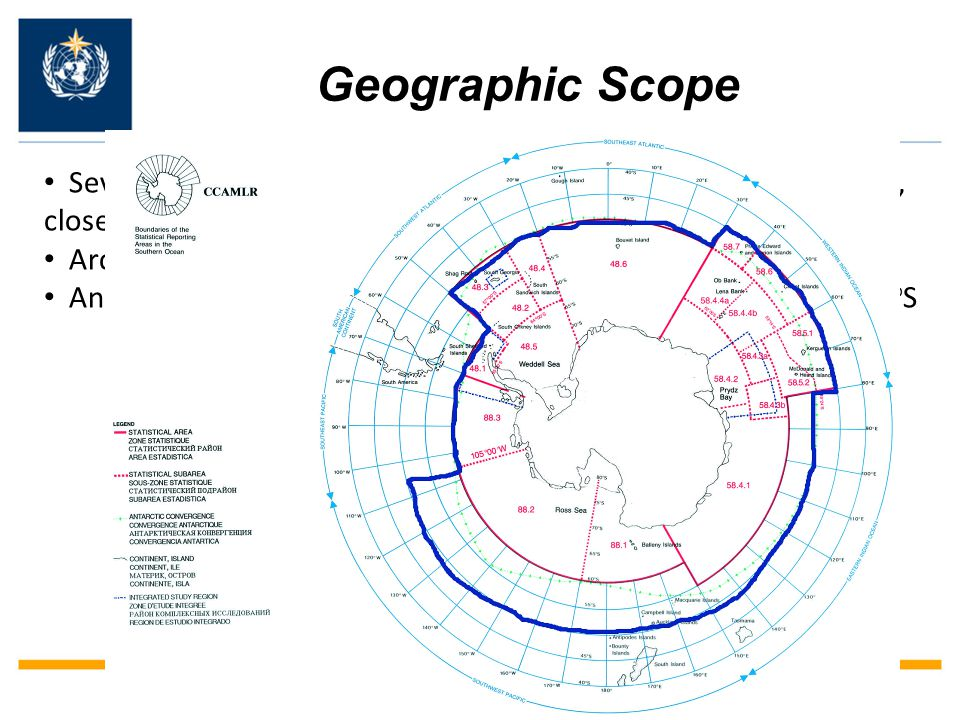 Geographic Scope Several different delineations of the Arctic and Antarctic regions, closely tied to the specific activity or programme Arctic – EC-PORS interacts with Region II, IV and VI Antarctic – EC-PORS has operational responsibilities south of 60 o S