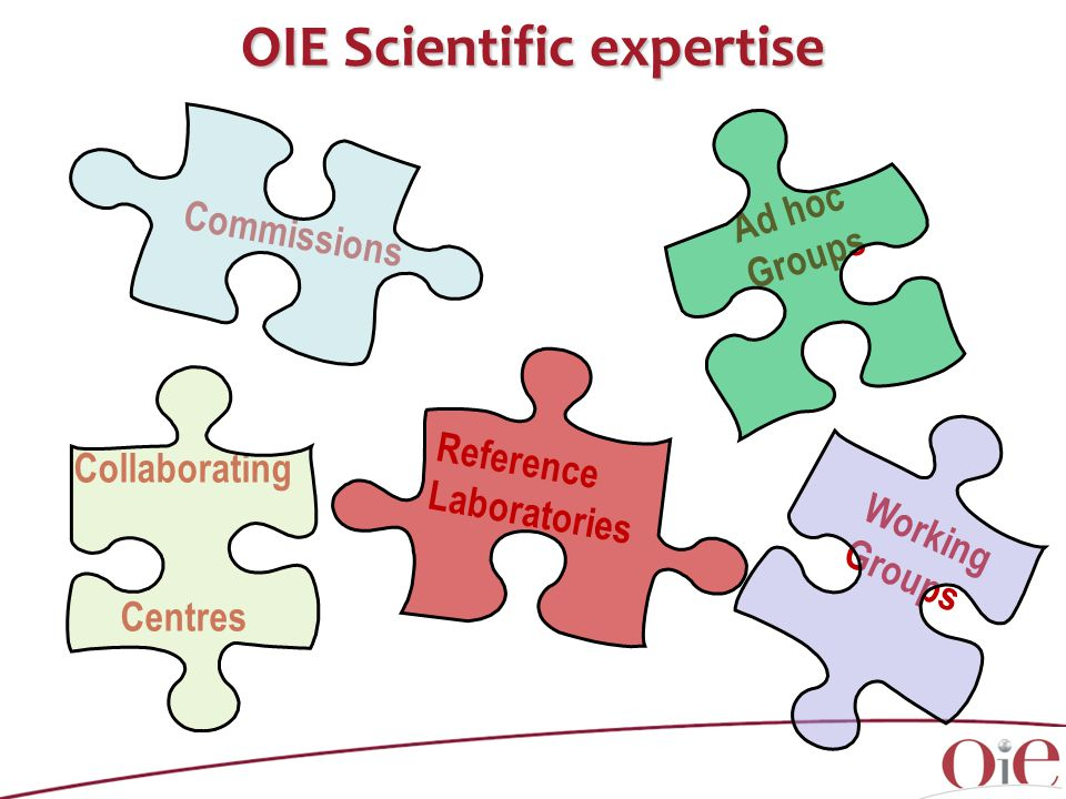 OIE Scientific expertise Commissions Ad hoc Groups Reference Laboratories Collaborating Centres Working Groups