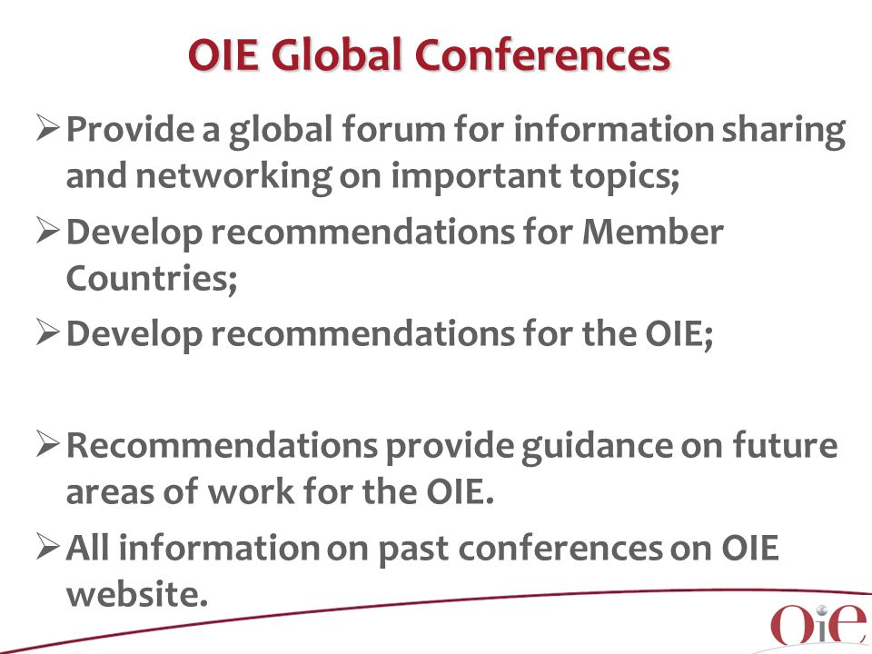  Provide a global forum for information sharing and networking on important topics;  Develop recommendations for Member Countries;  Develop recommendations for the OIE;  Recommendations provide guidance on future areas of work for the OIE.