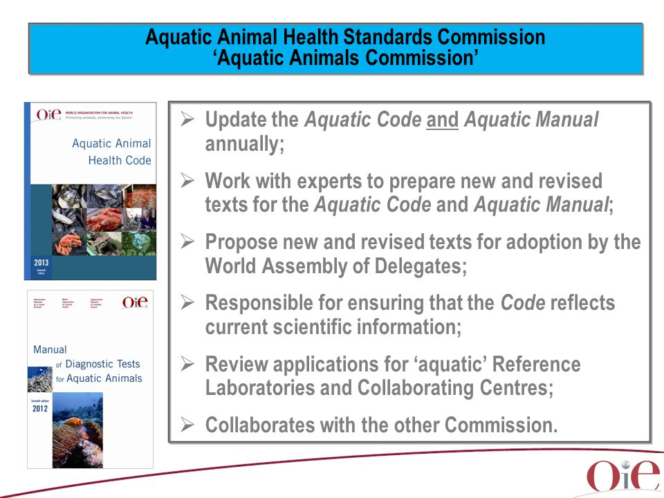 Aquatic Animal Health Standards Commission 'Aquatic Animals Commission'  Update the Aquatic Code and Aquatic Manual annually;  Work with experts to prepare new and revised texts for the Aquatic Code and Aquatic Manual ;  Propose new and revised texts for adoption by the World Assembly of Delegates;  Responsible for ensuring that the Code reflects current scientific information;  Review applications for 'aquatic' Reference Laboratories and Collaborating Centres;  Collaborates with the other Commission.