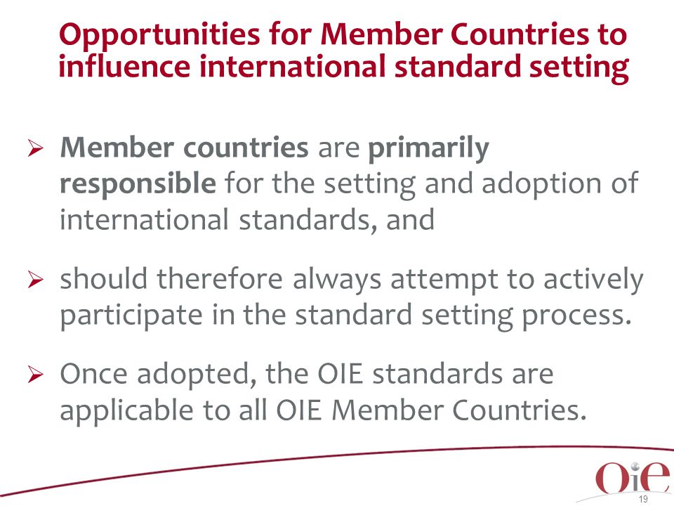 Opportunities for Member Countries to influence international standard setting  Member countries are primarily responsible for the setting and adoption of international standards, and  should therefore always attempt to actively participate in the standard setting process.