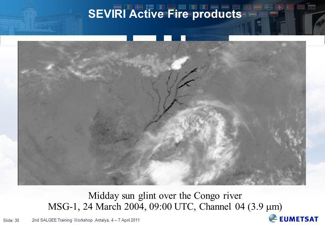 Slide: 30 SEVIRI Active Fire products 2nd SALGEE Training Workshop,Antalya, 4 – 7 April 2011 Midday sun glint over the Congo river MSG-1, 24 March 2004, 09:00 UTC, Channel 04 (3.9  m)