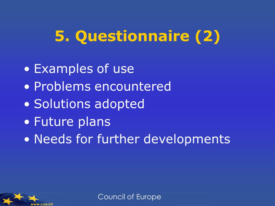 5. Questionnaire (2) Examples of use Problems encountered Solutions adopted Future plans Needs for further developments