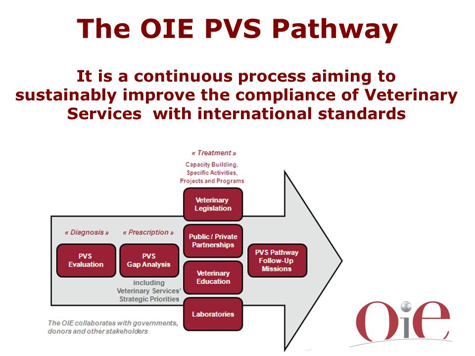It is a continuous process aiming to sustainably improve the compliance of Veterinary Services with international standards The OIE PVS Pathway