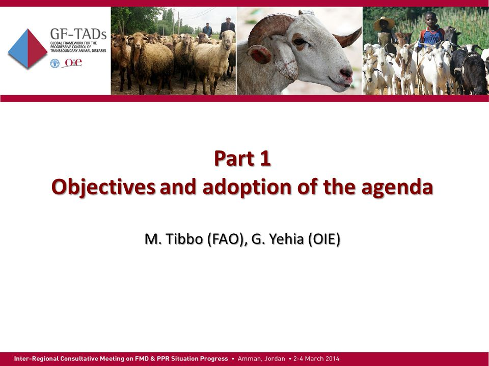 Part 1 Objectives and adoption of the agenda M. Tibbo (FAO), G. Yehia (OIE)