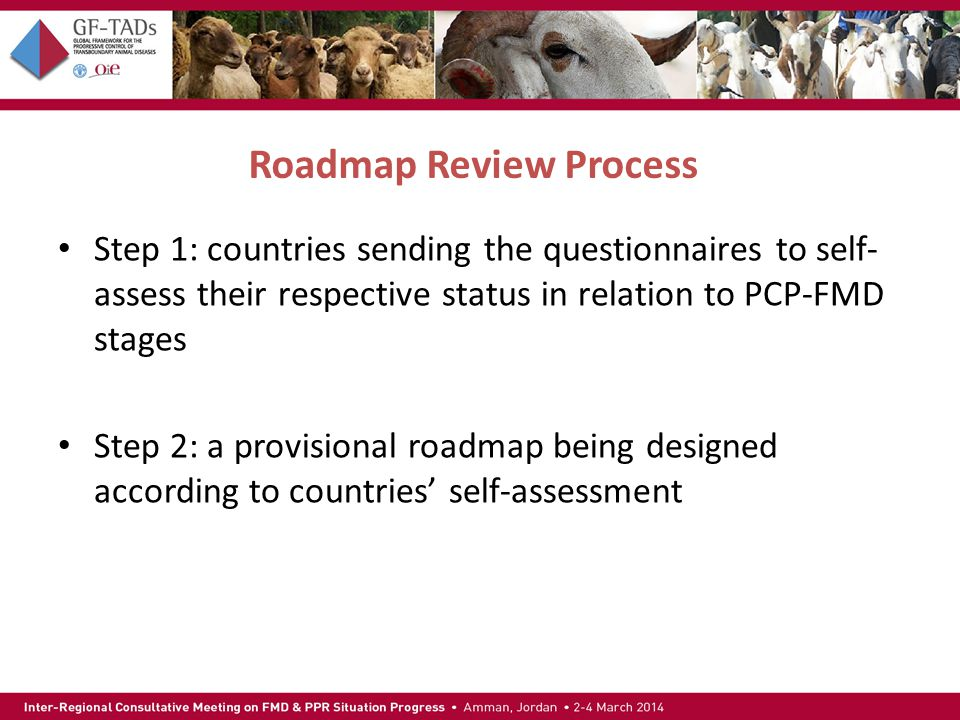Roadmap Review Process Step 1: countries sending the questionnaires to self- assess their respective status in relation to PCP-FMD stages Step 2: a provisional roadmap being designed according to countries' self-assessment