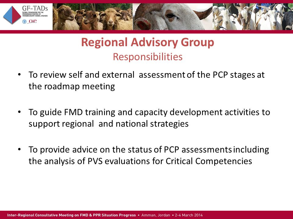 Regional Advisory Group Responsibilities To review self and external assessment of the PCP stages at the roadmap meeting To guide FMD training and capacity development activities to support regional and national strategies To provide advice on the status of PCP assessments including the analysis of PVS evaluations for Critical Competencies