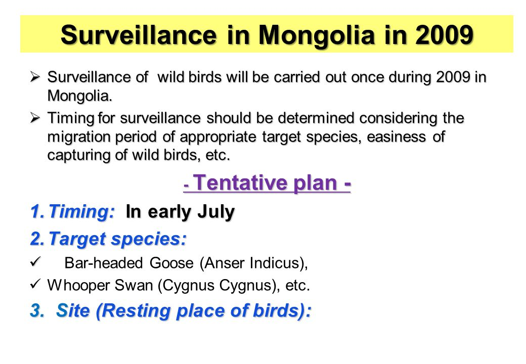  Surveillance of wild birds will be carried out once during 2009 in Mongolia.