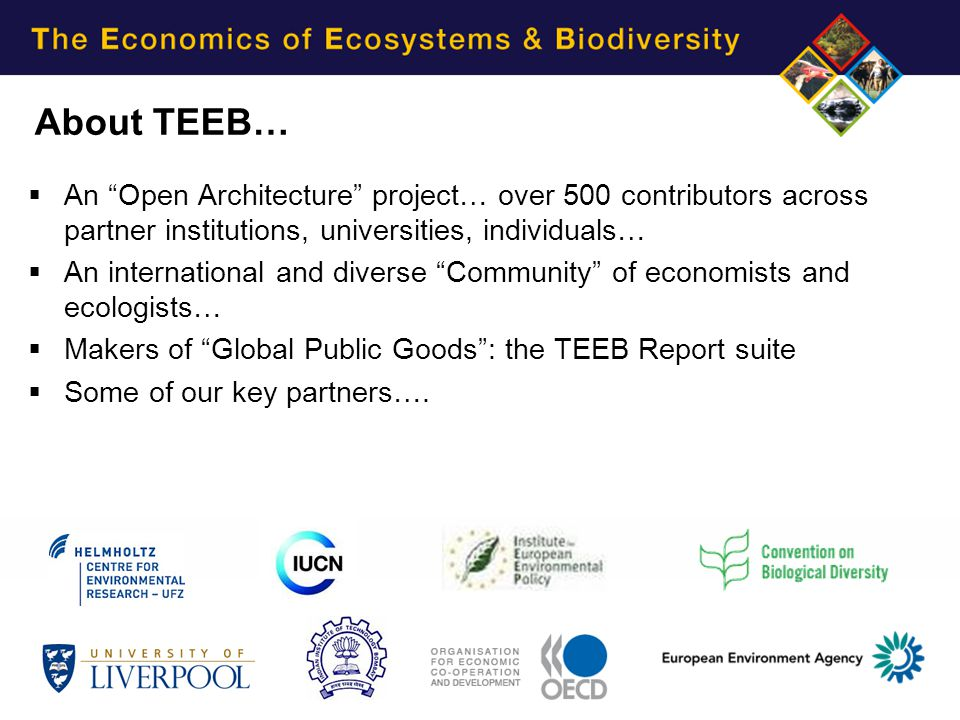 Irene Ring: PES and EFT – Examples and perspectives Page 3 About TEEB…  An Open Architecture project… over 500 contributors across partner institutions, universities, individuals…  An international and diverse Community of economists and ecologists…  Makers of Global Public Goods : the TEEB Report suite  Some of our key partners….