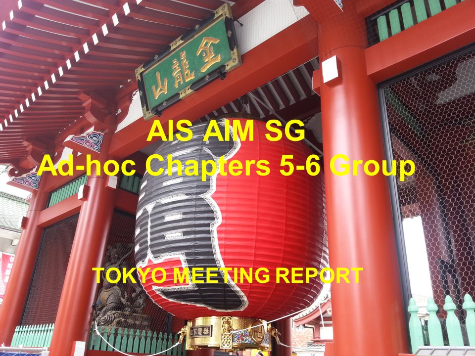 AIS AIM SG Ad-hoc Chapters 5-6 Group TOKYO MEETING REPORT
