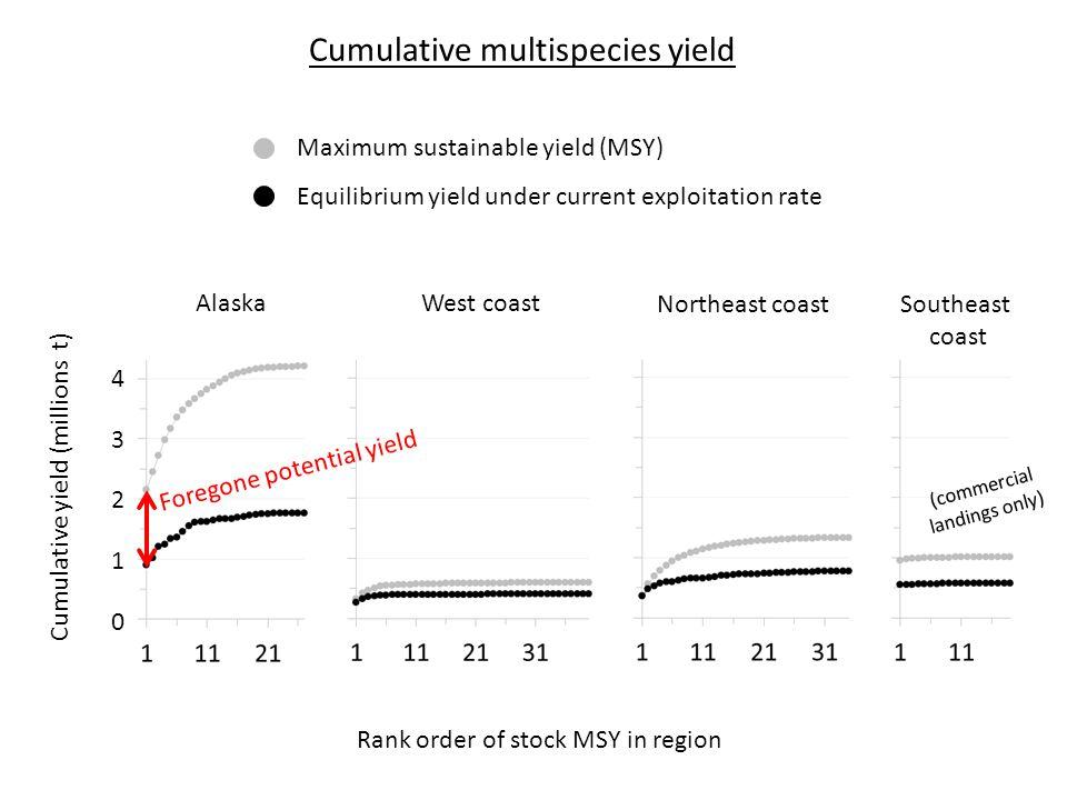 Rank order of stock MSY in region AlaskaWest coast Northeast coast Southeast coast 4321043210 Cumulative yield (millions t) Maximum sustainable yield (MSY) Equilibrium yield under current exploitation rate Foregone potential yield Cumulative multispecies yield (commercial landings only)