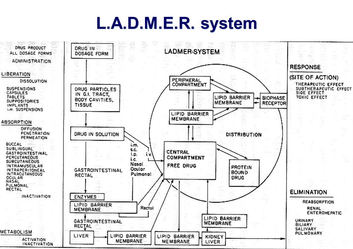   Slide 11 of 25 April 2007 L.A.D.M.E.R. system