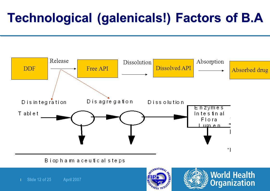   Slide 12 of 25 April 2007 Technological (galenicals!) Factors of B.A DDF Release Free API Dissolution Dissolved API Absorbed drug Absorption
