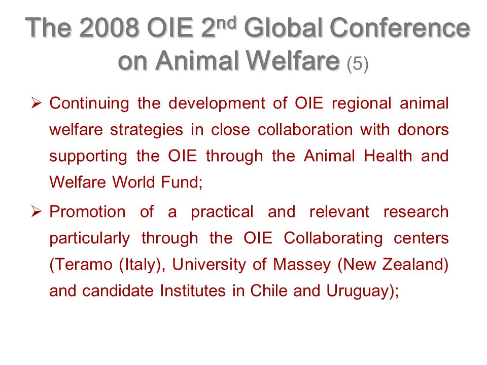   Continuing the development of OIE regional animal welfare strategies in close collaboration with donors supporting the OIE through the Animal Health and Welfare World Fund;   Promotion of a practical and relevant research particularly through the OIE Collaborating centers (Teramo (Italy), University of Massey (New Zealand) and candidate Institutes in Chile and Uruguay); The 2008 OIE 2 nd Global Conference on Animal Welfare The 2008 OIE 2 nd Global Conference on Animal Welfare (5)