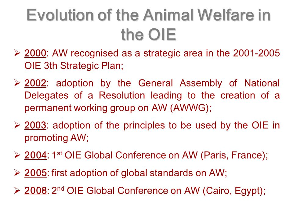 Evolution of the Animal Welfare in the OIE  2000: AW recognised as a strategic area in the OIE 3th Strategic Plan;  2002: adoption by the General Assembly of National Delegates of a Resolution leading to the creation of a permanent working group on AW (AWWG);  2003: adoption of the principles to be used by the OIE in promoting AW;  2004: 1 st OIE Global Conference on AW (Paris, France);  2005: first adoption of global standards on AW;  2008: 2 nd OIE Global Conference on AW (Cairo, Egypt);