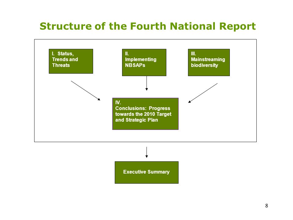 Chapter I: an analysis or synthesis of the status and trends of, and major threats to, various components of biodiversity in the country (a succinct overview) Chapter II: an overview of implementation of NBSAPs (assessing the extent to which actions identified in NBSAPs are implemented, including obstacles encountered as well as the effectiveness of the strategy) 9 5.