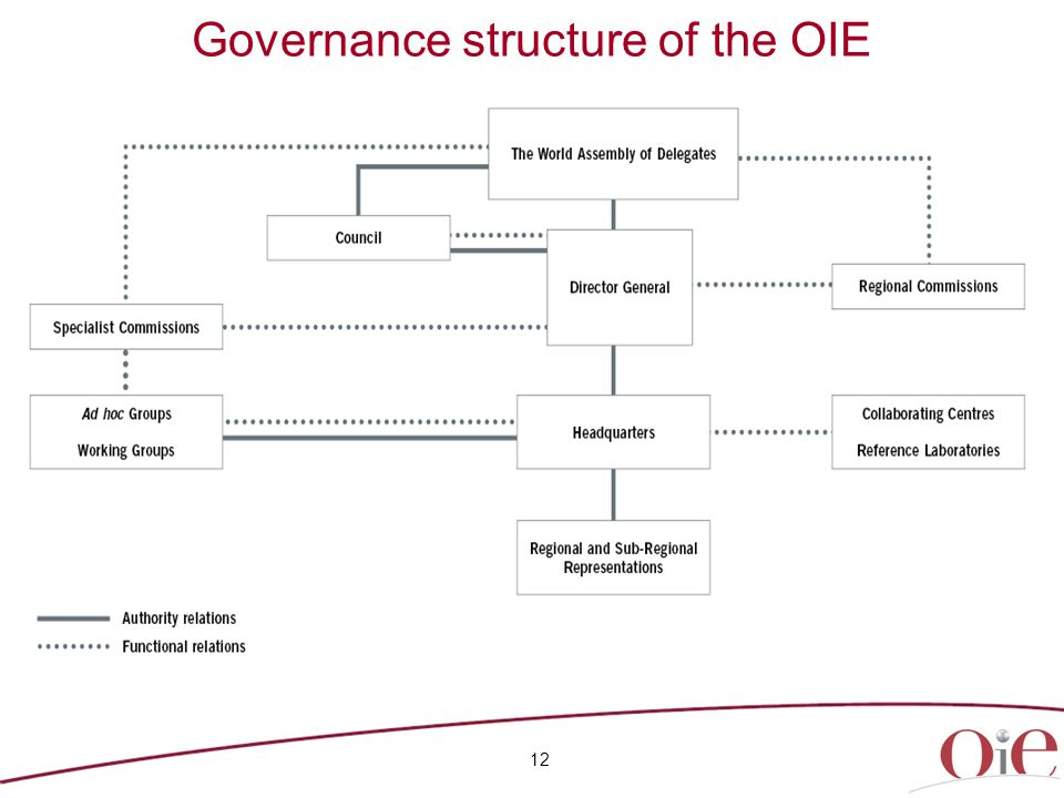 Governance structure of the OIE 12
