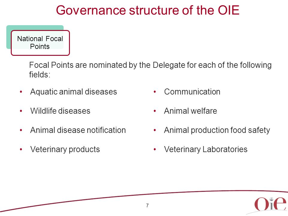Governance structure of the OIE 7 Aquatic animal diseases Wildlife diseases Animal disease notification Veterinary products Communication Animal welfare Animal production food safety Veterinary Laboratories National Focal Points Focal Points are nominated by the Delegate for each of the following fields: