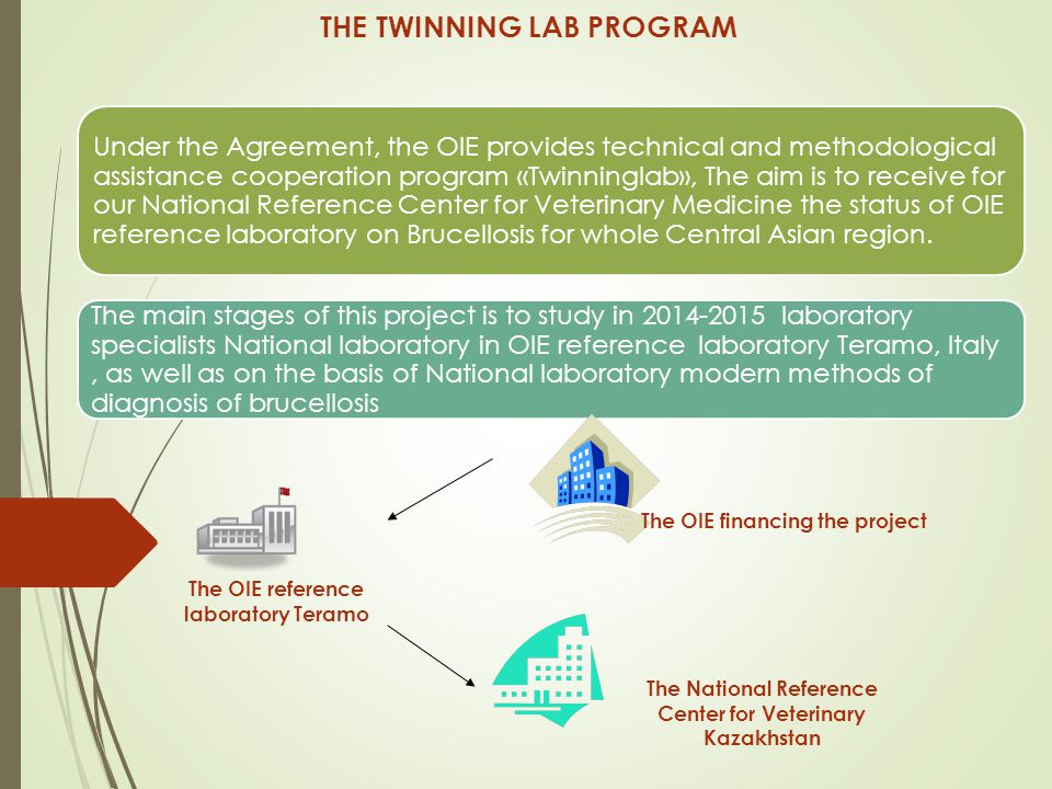 THE TWINNING LAB PROGRAM Under the Agreement, the OIE provides technical and methodological assistance cooperation program «Twinninglab», The aim is to receive for our National Reference Center for Veterinary Medicine the status of OIE reference laboratory on Brucellosis for whole Central Asian region.