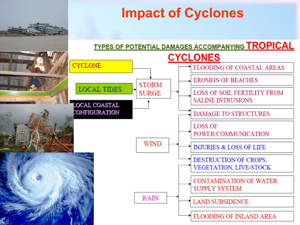 Components of sea level elevation Astronomical Tide Wind waves Wave set up Storm surge Tsunamis