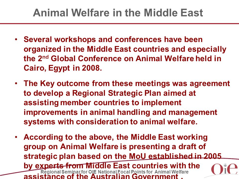 Animal Welfare in the Middle East Several workshops and conferences have been organized in the Middle East countries and especially the 2 nd Global Conference on Animal Welfare held in Cairo, Egypt in 2008.