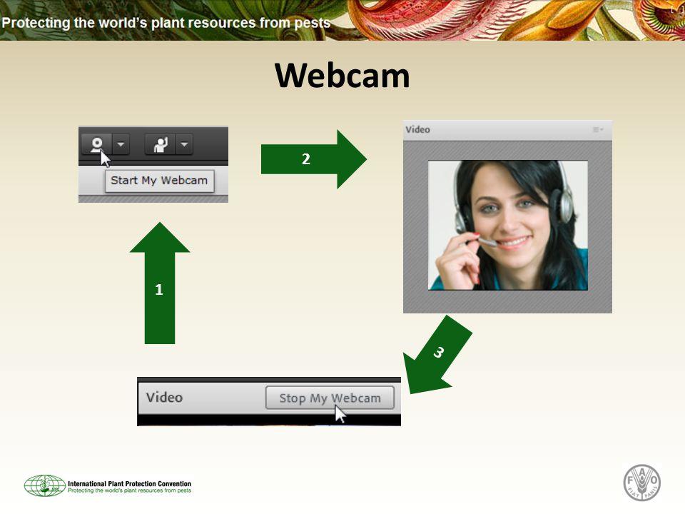 Webcam 1 2 3