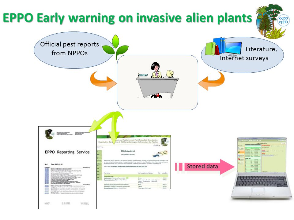 EPPO Early warning on invasive alien plants Official pest reports from NPPOs Literature, Internet surveys Stored data