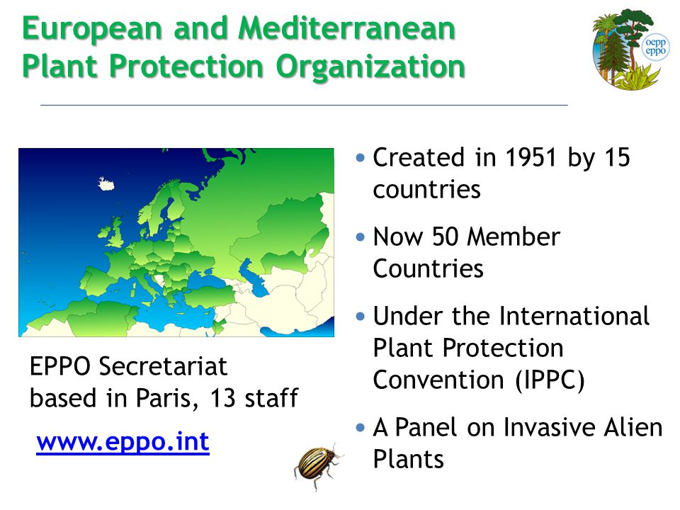 Created in 1951 by 15 countries Now 50 Member Countries Under the International Plant Protection Convention (IPPC) A Panel on Invasive Alien Plants European and Mediterranean Plant Protection Organization EPPO Secretariat based in Paris, 13 staff www.eppo.int