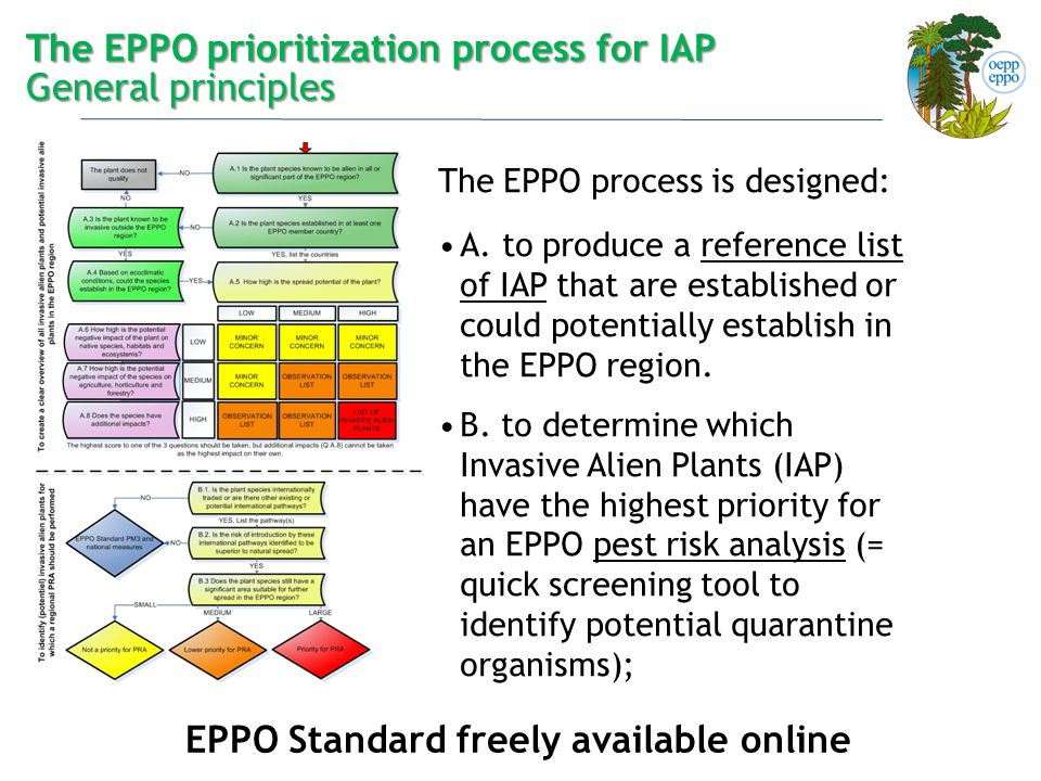The EPPO prioritization process for IAP General principles The EPPO process is designed: A. to produce a reference list of IAP that are established or