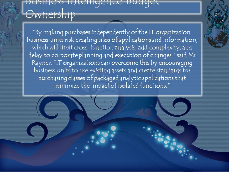 "Business Intelligence Budget Ownership ""By making purchases independently of the IT organization, business units risk creating silos of applications a"