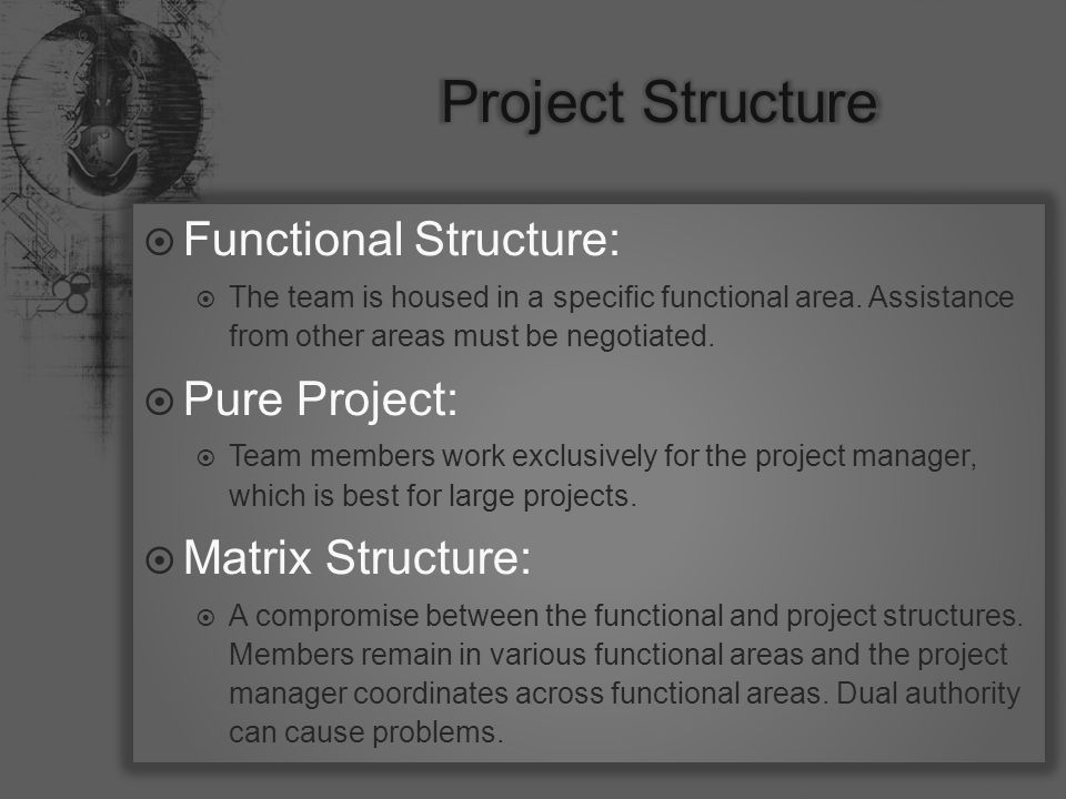  Functional Structure:  The team is housed in a specific functional area.