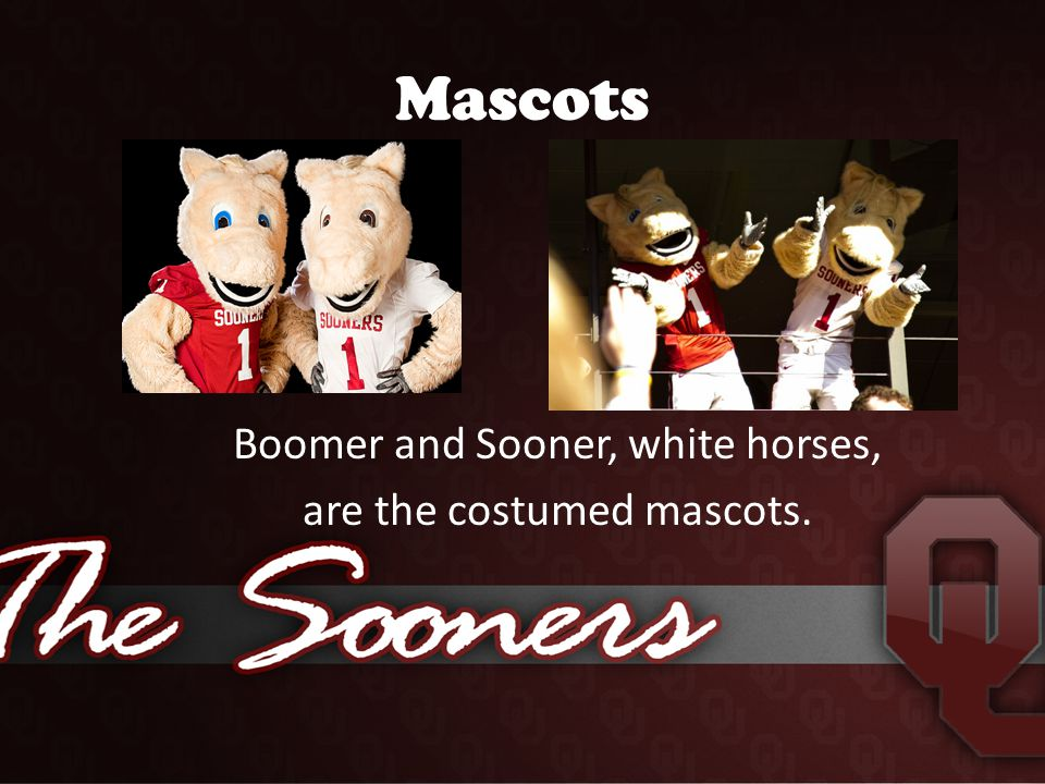 Mascots Boomer and Sooner, white horses, are the costumed mascots.