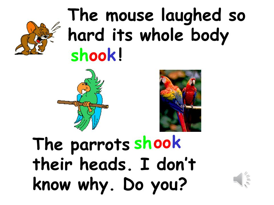 The mouse laughed so hard its whole body .sh oo k The parrots their heads.