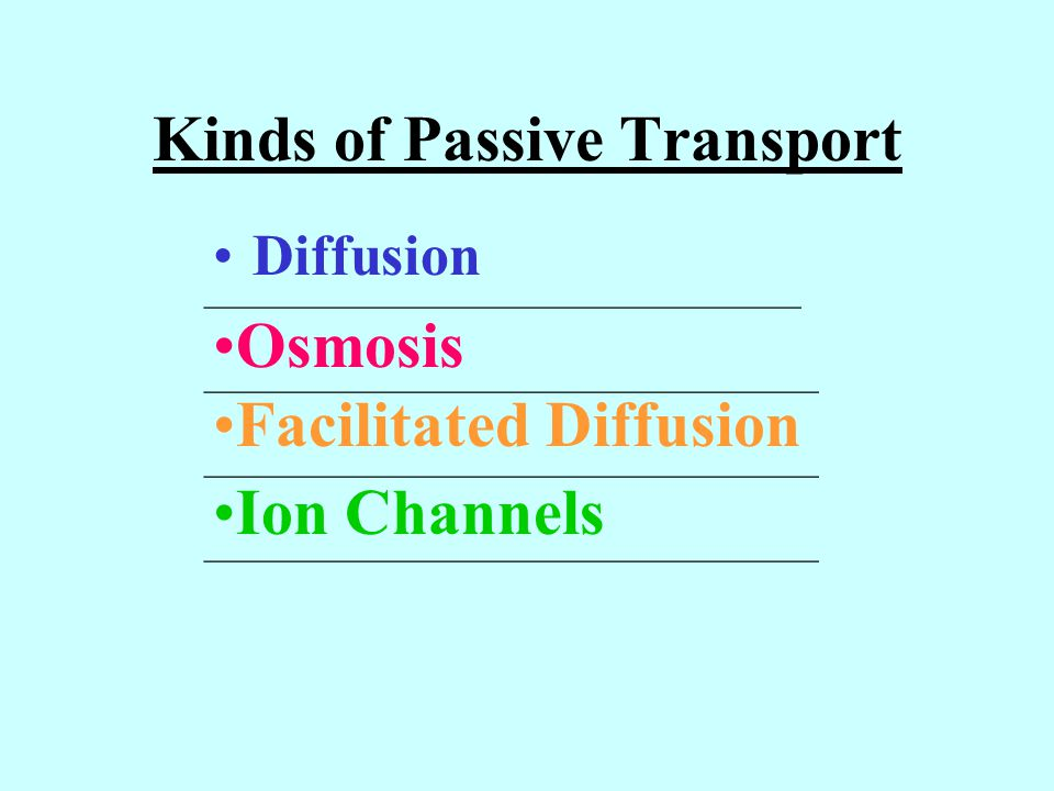 Kinds of Passive Transport Diffusion Osmosis Facilitated Diffusion Ion Channels __________________________________ ___________________________________