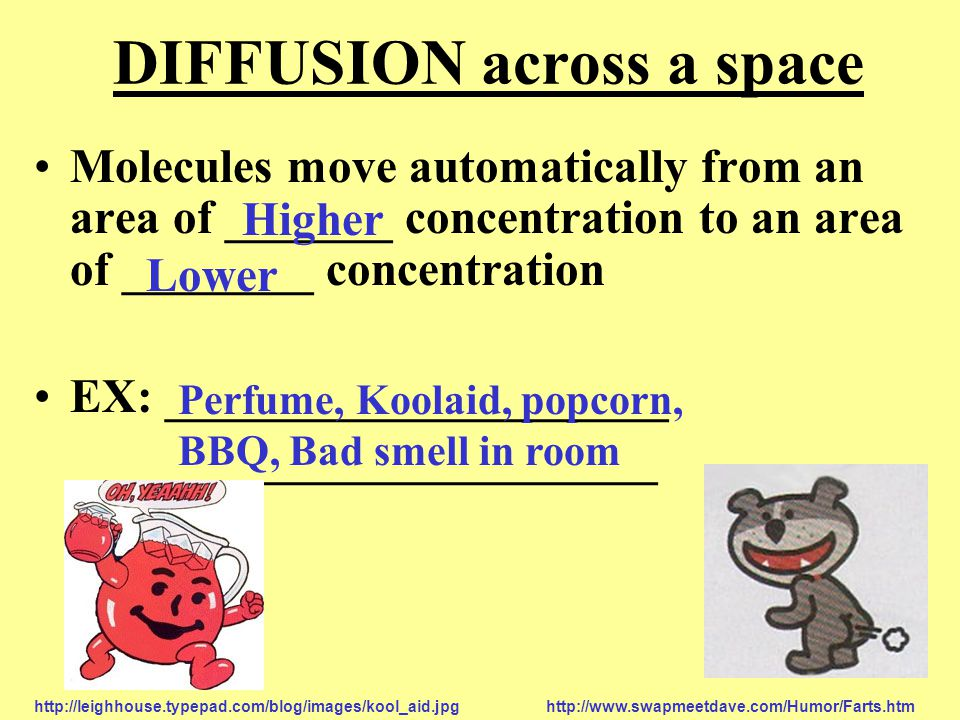 DIFFUSION across a space Molecules move automatically from an area of _______ concentration to an area of ________ concentration EX: _____________________ _____________________ Higher Lower Perfume, Koolaid, popcorn, BBQ, Bad smell in room