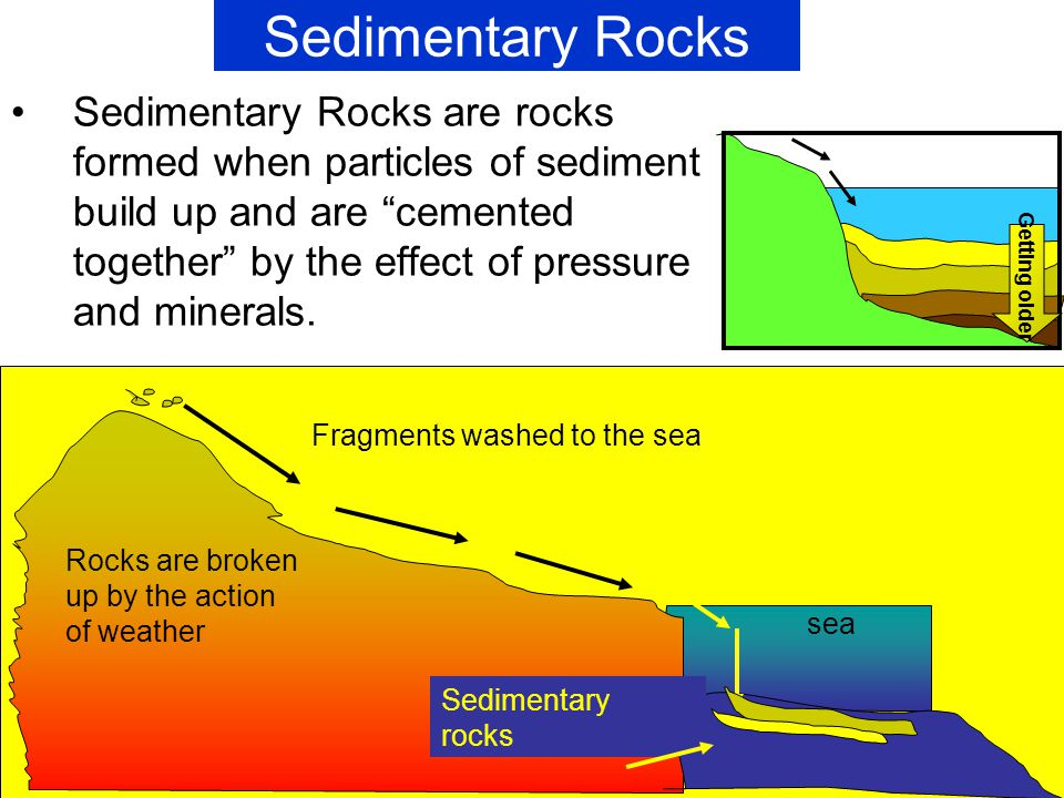 Sedimentary Rocks Formation - More information - qaree.info