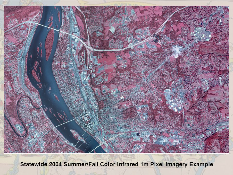 Statewide 2004 Summer/Fall Color Infrared 1m Pixel Imagery Example