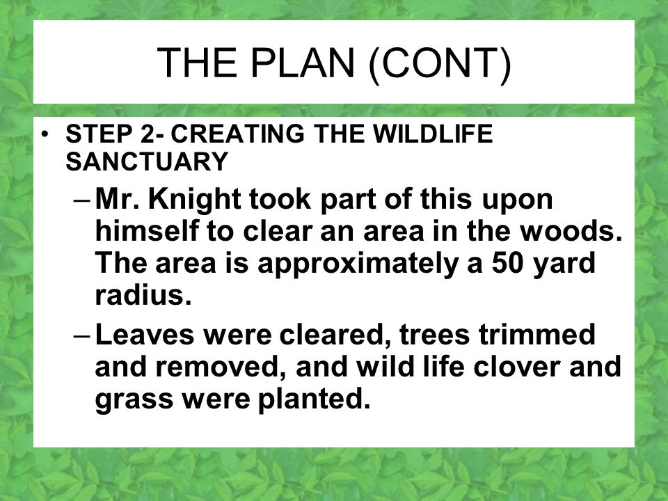THE PLAN (CONT) STEP 2- CREATING THE WILDLIFE SANCTUARY –Mr.