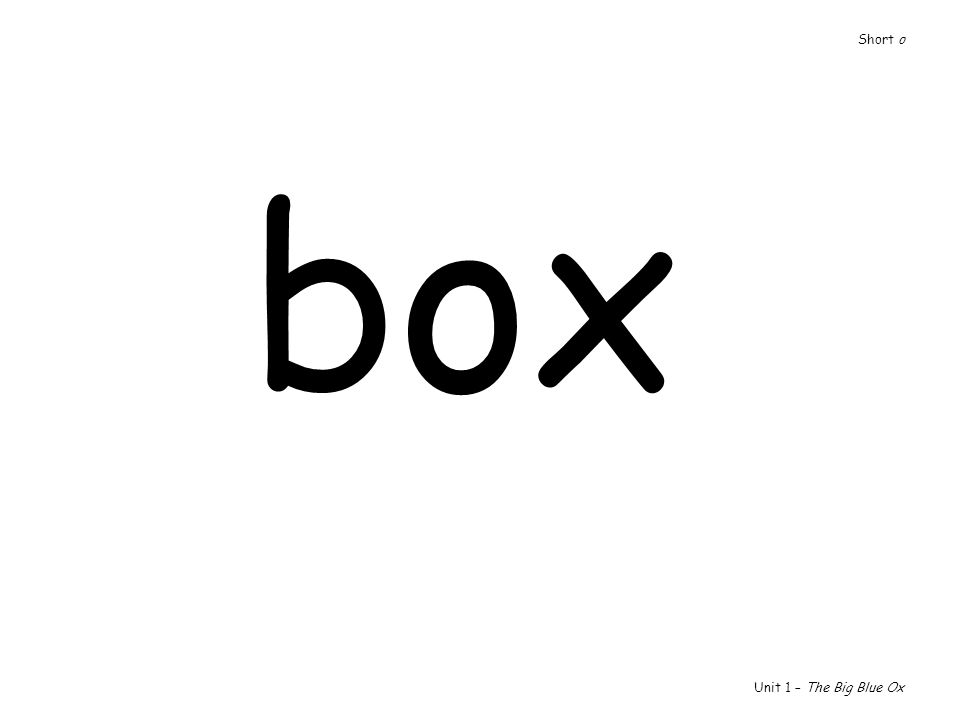 box Unit 1 – The Big Blue Ox Short o