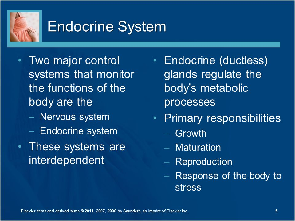Endocrine System Two major control systems that monitor the functions of the body are the –Nervous system –Endocrine system These systems are interdep