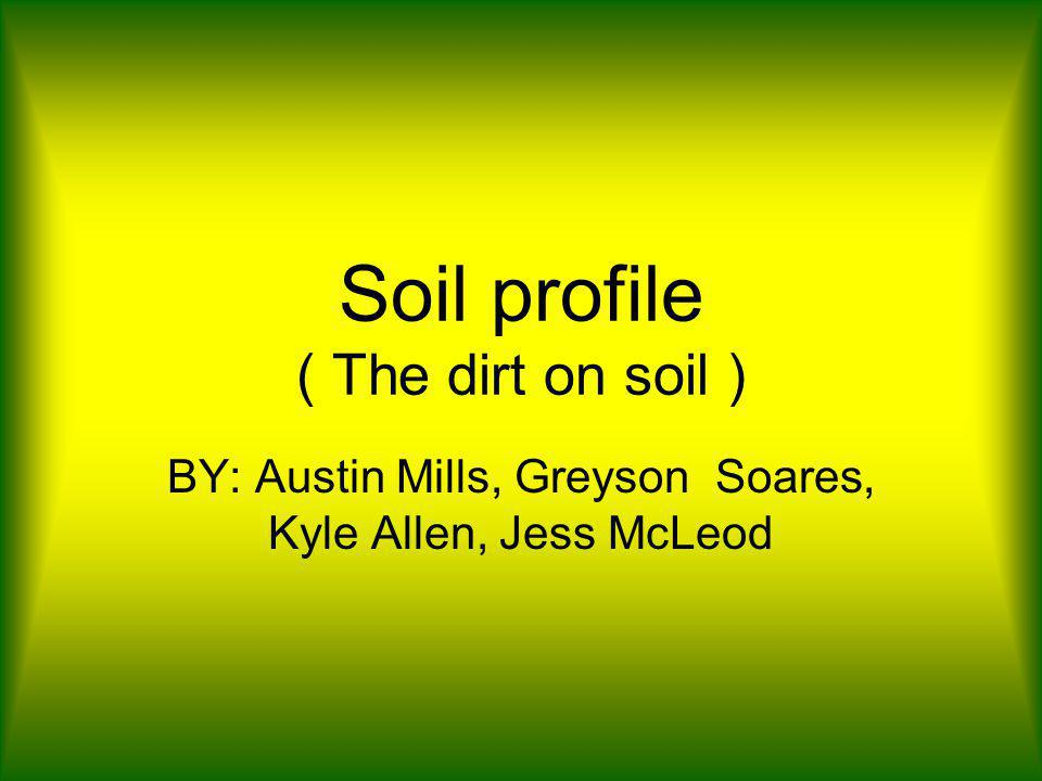 Soil profile ( The dirt on soil ) BY: Austin Mills, Greyson Soares, Kyle Allen, Jess McLeod