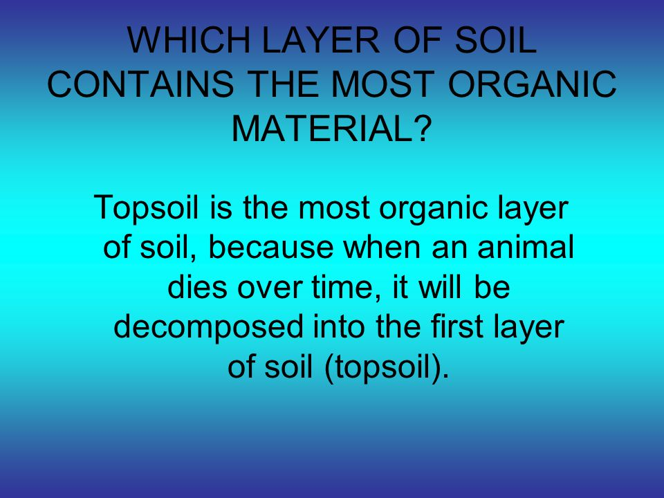 WHAT IS A SOIL SCIENTIST AND WHAT TASK DO THEY PERFORM.