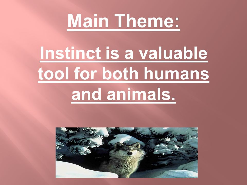 Main Theme: Instinct is a valuable tool for both humans and animals.