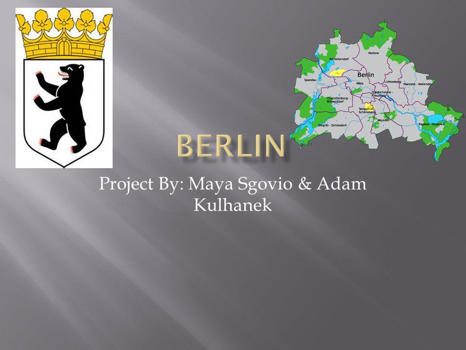 Project By: Maya Sgovio & Adam Kulhanek