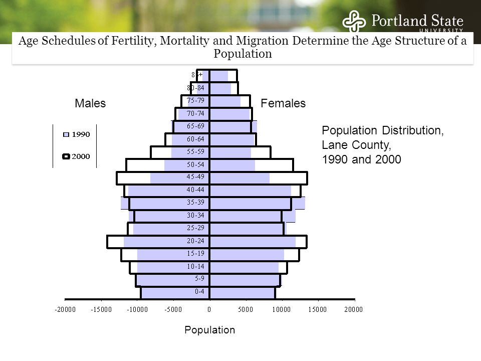 Population Distribution, Lane County, 1990 and 2000 MalesFemales Population Age Schedules of Fertility, Mortality and Migration Determine the Age Structure of a Population